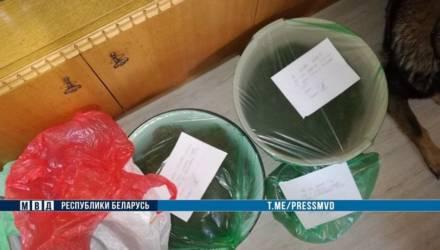 У гомельчанина нашли около 400 гр готовой марихуаны, еще 12 кг наркотравы он хранил в Могилевской области