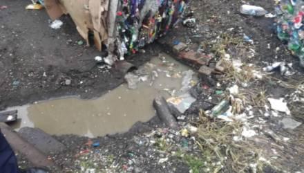 Злостное нарушение экологического законодательства обнаружили в Могилёве
