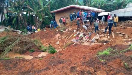 В Камеруне неизвестные напали на деревню и убили 22 жителя: среди них – 14 детей
