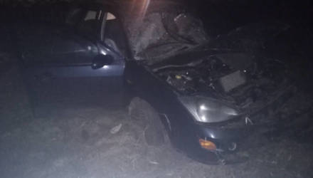 В Шкловском районе водитель «Форд Фокус» съехал в кювет и врезался в дерево