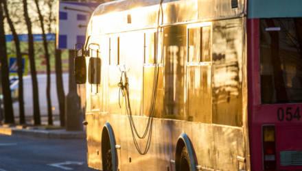 В Бобруйске заработало новое приложение для отслеживания транспорта — оно подходит слабовидящим