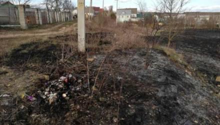 При сжигании мусора в Могилевском районе погиб мужчина
