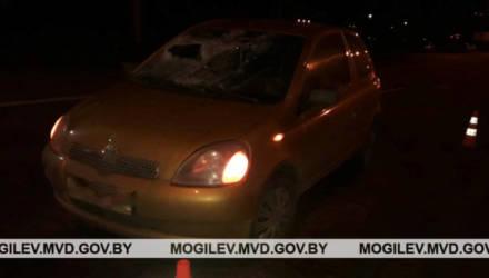 Мужчина в Могилеве переходил дорогу в неположенном месте и попал под авто
