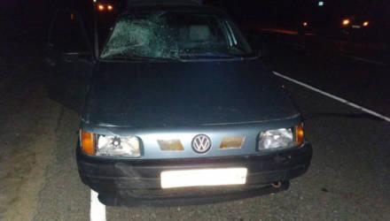 В Белыничском районе VW сбил мужчину. Пешеход попал в реанимацию