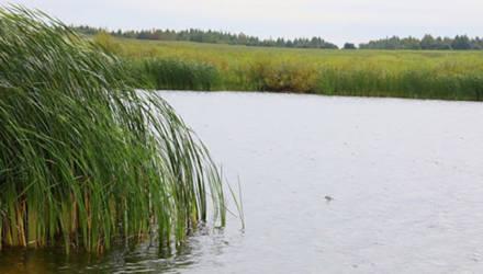 Браконьеров-рыболовов задержали на Могилевщине