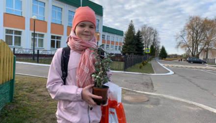 «Три недели дома — это много». Как началась четверть в элитной минской гимназии и на Шкловщине