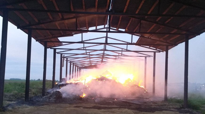 Под Бобруйском сгорело 100 т сена