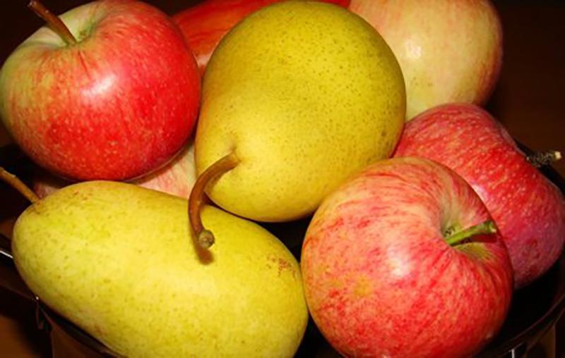 Могилевские таможенники пресекли незаконный ввоз в РФ более 83 тонн фруктов