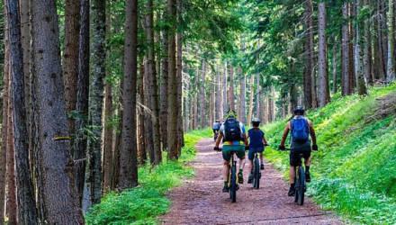 На велосипеде по Беларуси: топ живописных маршрутов. Узнайте Могилевщину