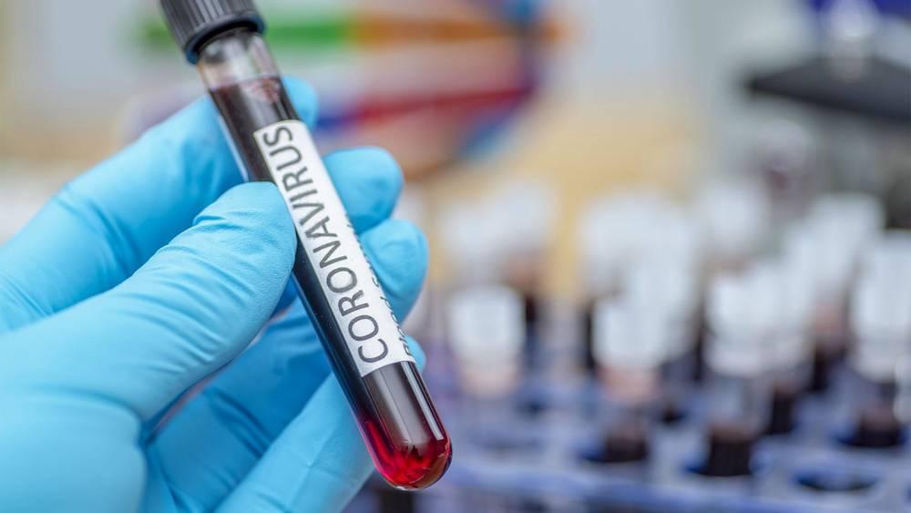 Учёный, готовивший открытие по коронавирусу, убит. Что пишет зарубежная пресса