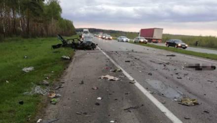 В аварии на М1 под Борисовом погибли шесть человек