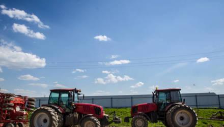 Лукашенко продлил до 2025 года указ о развитии юго-востока Могилевщины