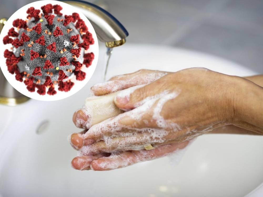 Вирусолог рассказал, как можно заразиться коронавирусом, сидя дома