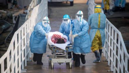 Пандемия ускоряет темпы: ровно полгода назад мир узнал о COVID-19