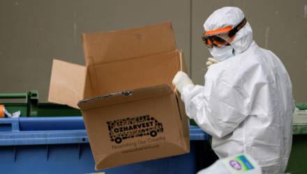 Смерти от голода из-за COVID: главное о пандемии в мире к пятнице 10 июля