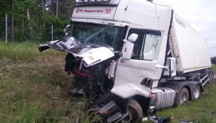 Под Осиповичами фура вытолкнула на встречку ЗИЛ: грузовик перевернулся, водитель в реанимации