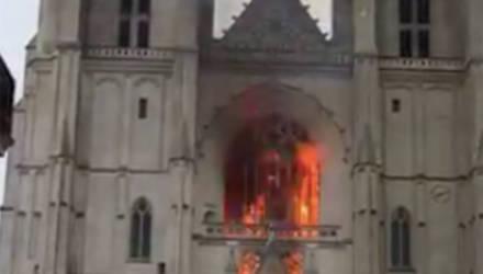 Пожар в готическом соборе святых Петра и Павла во Франции попал на видео